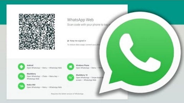 whatscan-for-whatsapp